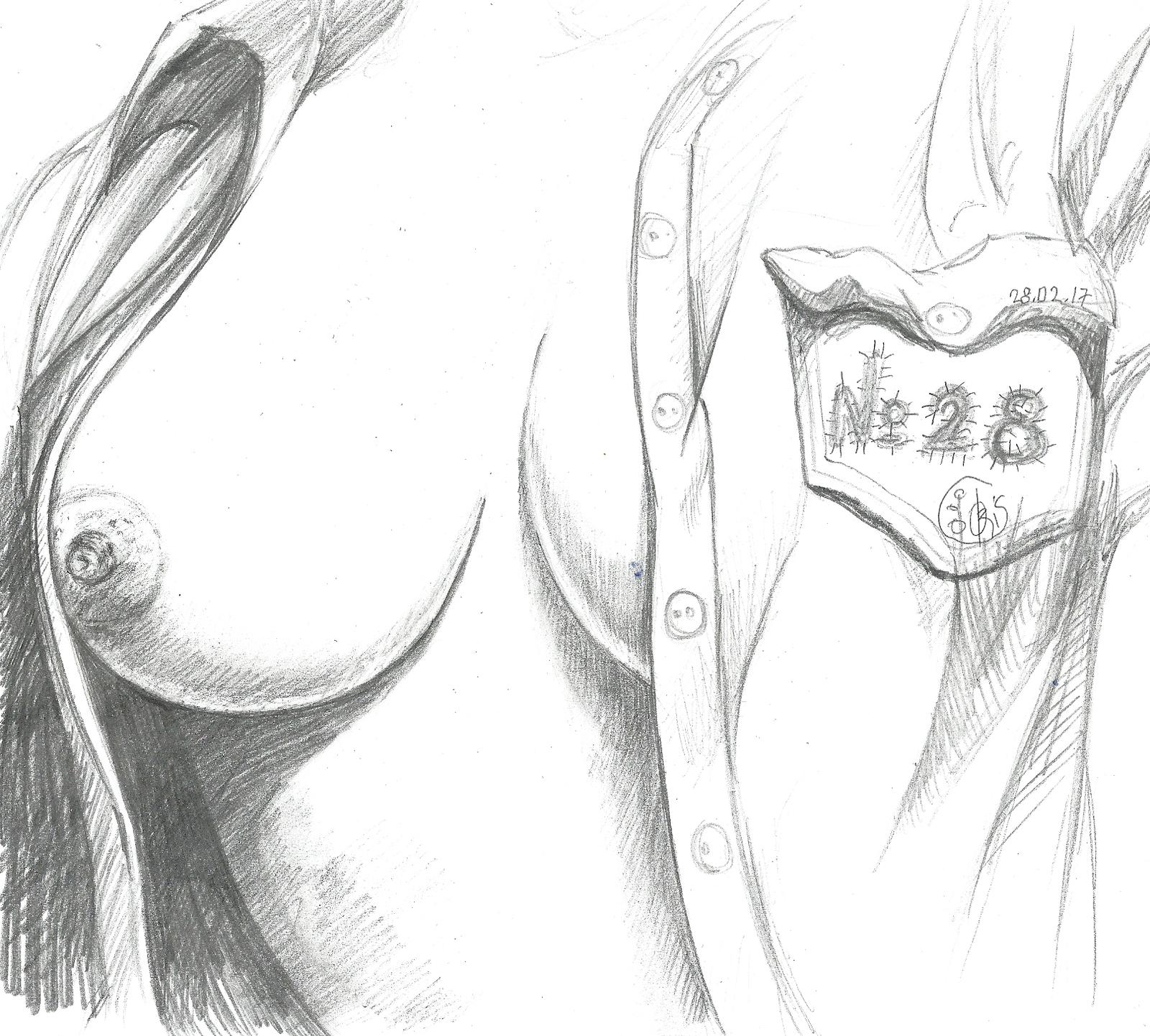 Рисунки сиськи