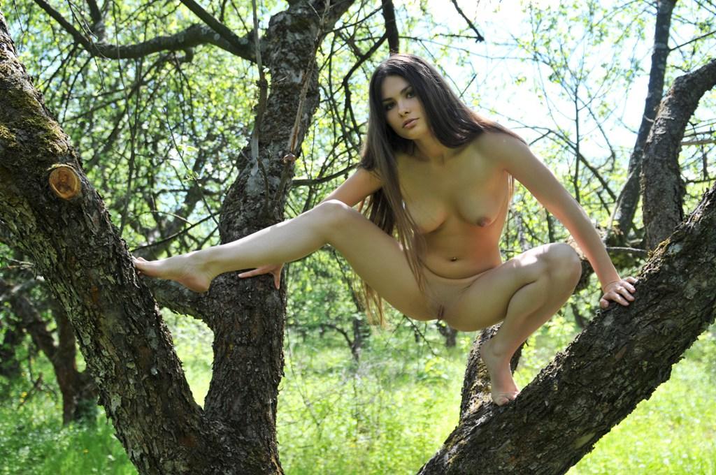 папа ебет порно сиськи в лесу головка